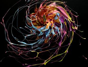 Circle : Tourbillons de peinture et de couleurs