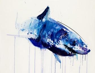 Les requins blancs de Dave White