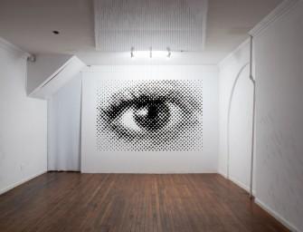 Perceptual Shift par le sculpteur américain Michael Murphy