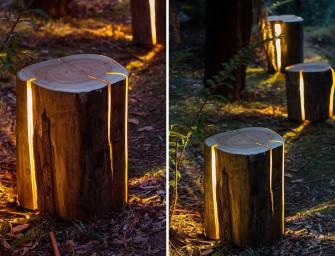 Duncan Meerding : Un tronc d'arbre transformé en luminaire design