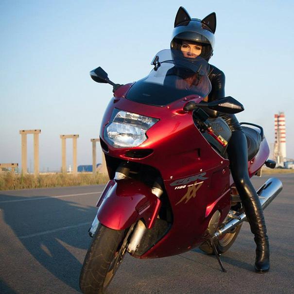 casque de moto tête de chats8