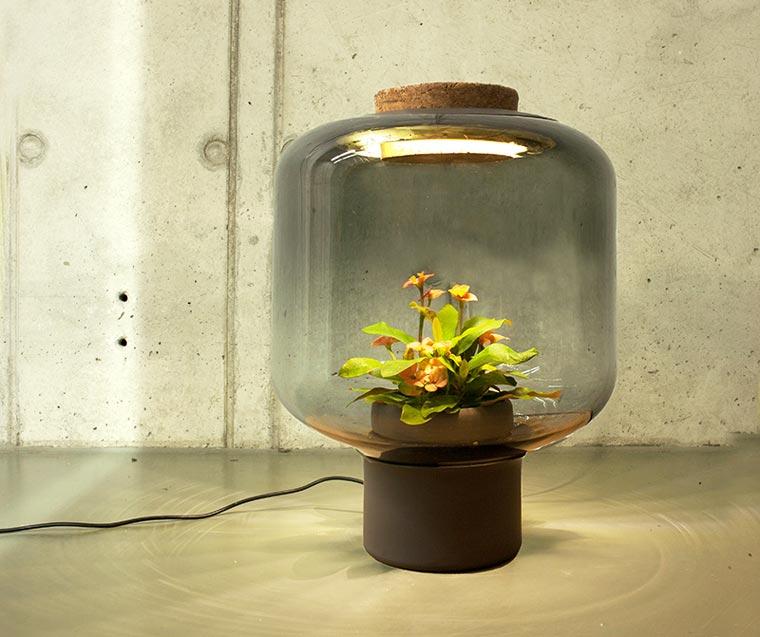 Plantlamp2