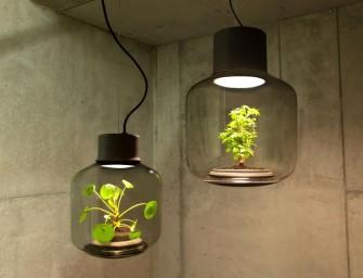 Mygdal Plantlamp, un joli projet pour faire pousser des plantes